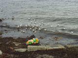 Helgoland - Warten auf einen milde gestimmten Wettergott