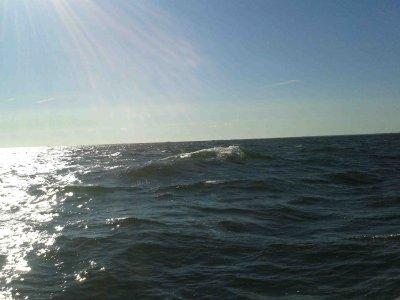 Ein Tag mit Überraschungen: MISS SOPHIE auf dem Weg nach Finnland